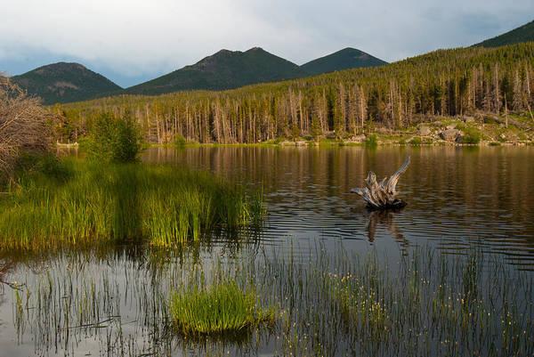 Photograph - Sprague Lake Sunset by Cascade Colors
