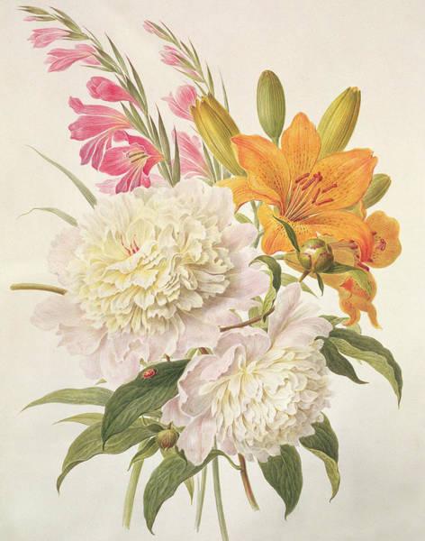 Gladiolus Painting - Sprays Of Gladioli And Peonies  by Henriette Gertruide Knip