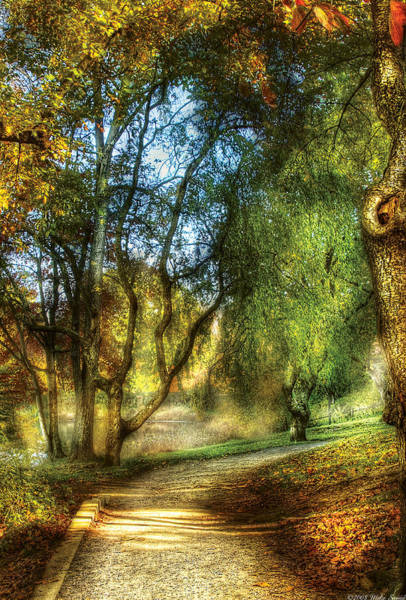 Photograph - Spring - Landscape - My Journey My Path by Mike Savad
