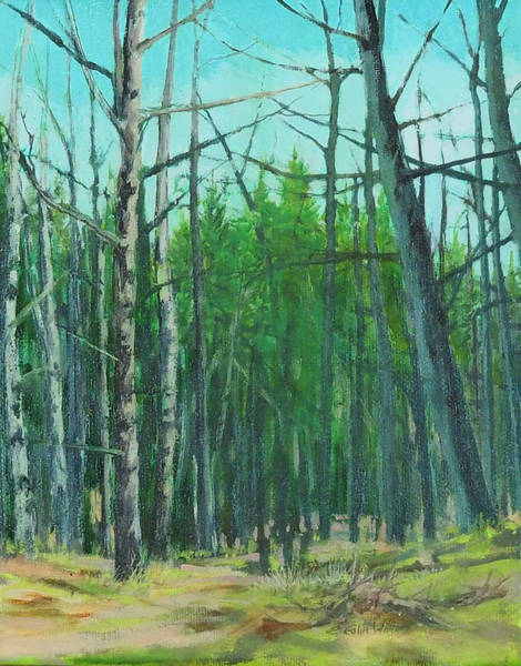 Painting - Spring Aspens by E Colin Williams ARCA