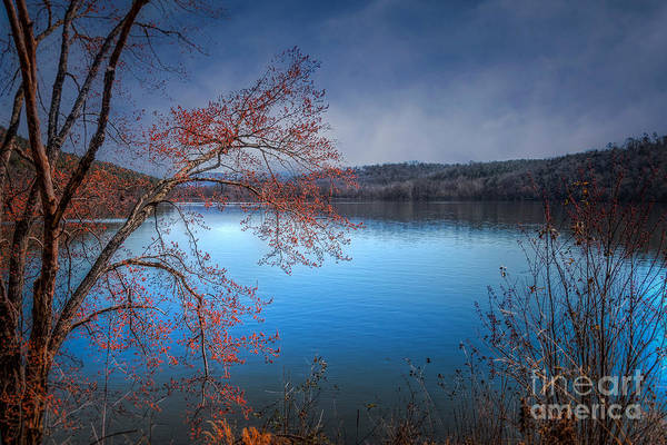 Photograph - Spring At The Lake by Larry McMahon