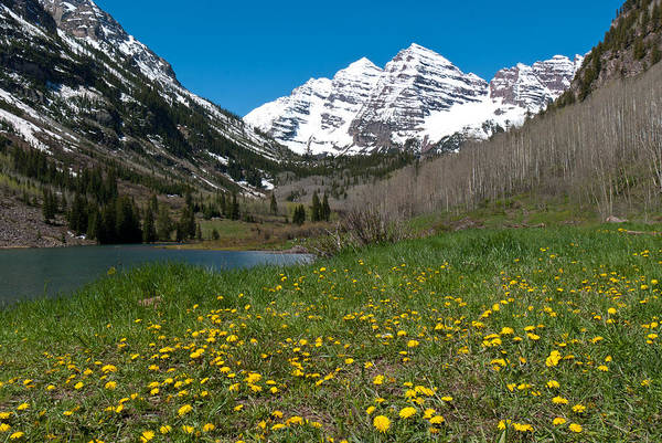Photograph - Spring At The Maroon Bells by Cascade Colors