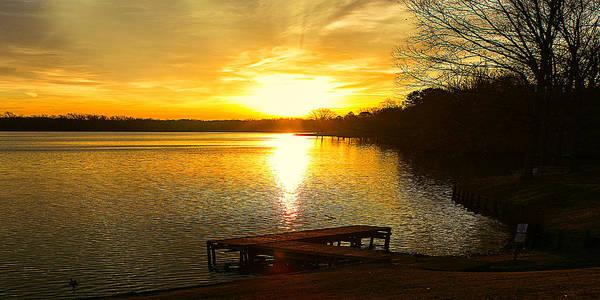 Photograph - Spring Awakening Lakeside Sunrise Landscape by Barry Jones