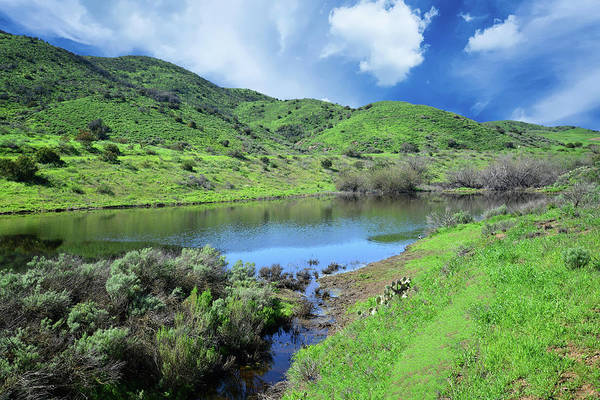 Photograph - Spring Bliss In The Santa Monica Mountains by Lynn Bauer