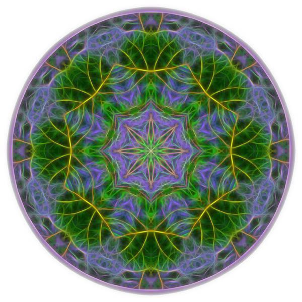 Digital Art - Spring Bloom Colors Mandala by Beth Sawickie