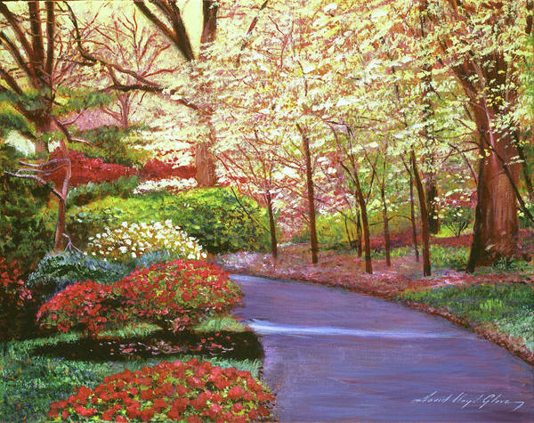 Wall Art - Painting - Spring Blossom Impressions - Central Park by David Lloyd Glover