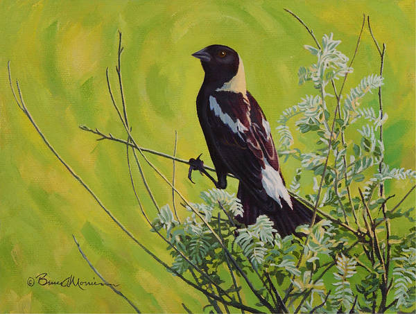Tallgrass Wall Art - Painting - Spring Bobolink by Bruce Morrison