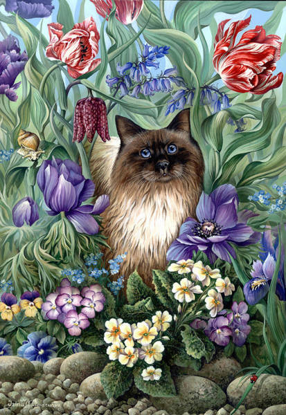 Wall Art - Photograph - Spring Cat by MGL Meiklejohn Graphics Licensing