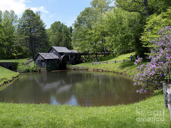 Photograph - Spring Comes To Mabry Mill by Brenda Kean