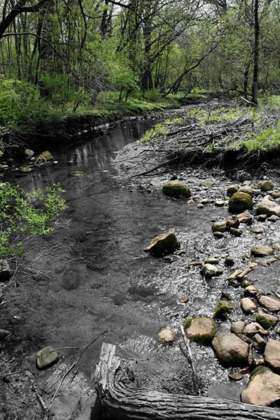 Photograph - Spring Creek by Dylan Punke