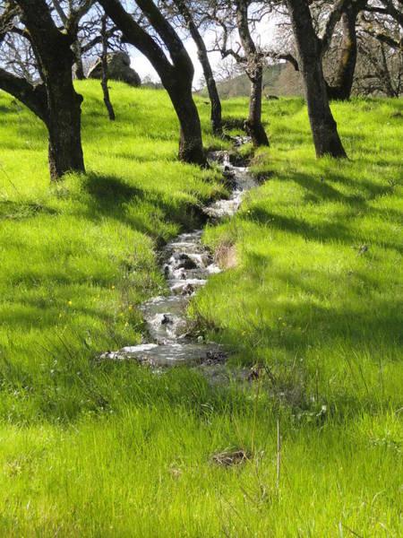 Rockville Photograph - Spring Creek by Juan Romagosa