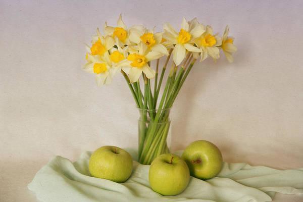 Photograph - Spring Daffodils And Green Apples by Natalia Otrakovskaya