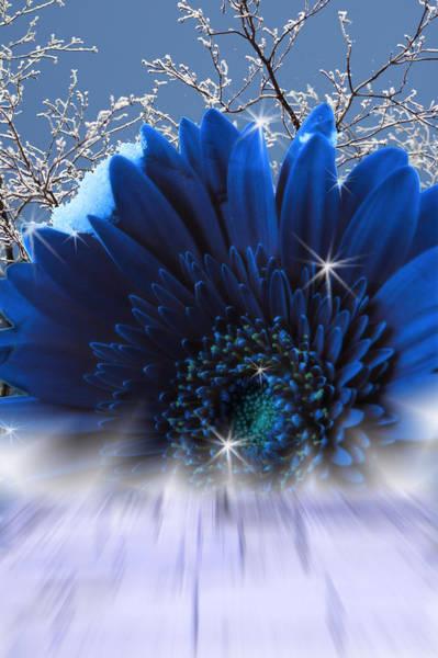 Digital Art - Spring Emergence  by Cathy Beharriell