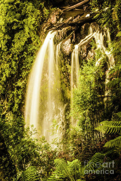 Wall Art - Photograph - Spring Falls by Jorgo Photography - Wall Art Gallery