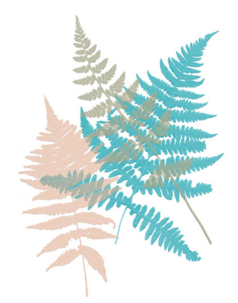 Wall Art - Painting - Spring Fern 1 by Bonnie Bruno