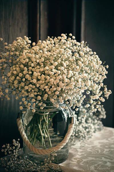 Jug Digital Art - Spring Flower Arrangement by Maria Angelica Maira