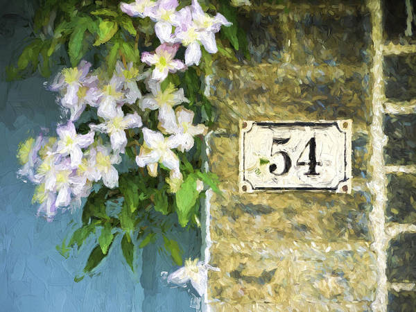 Clematis Wall Art - Photograph - Spring Flowers At No. 54 Cambridge England by Carol Leigh