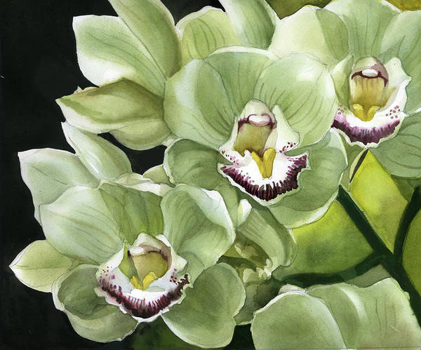 Painting - Spring Green Orchid by Alfred Ng
