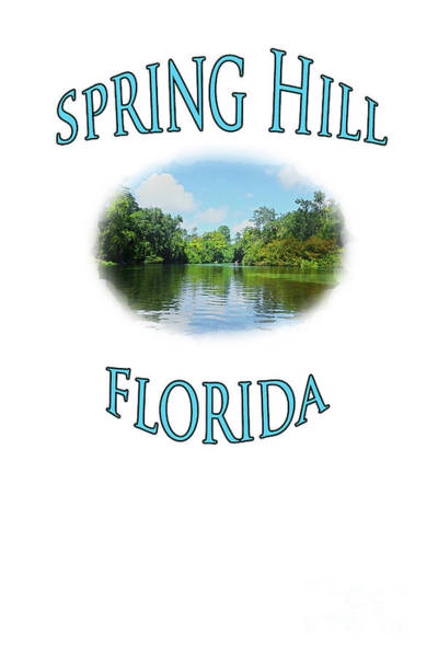 Photograph - Spring Hill Florida by Judy Hall-Folde