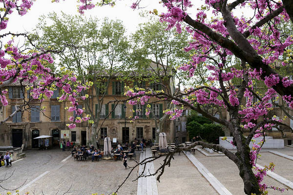 Photograph - Spring In Avignon 2 by Andrew Fare