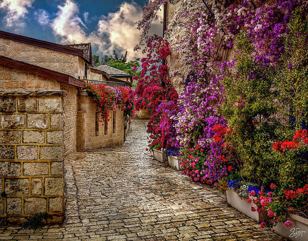 Photograph - Spring In Jerusalem by Endre Balogh
