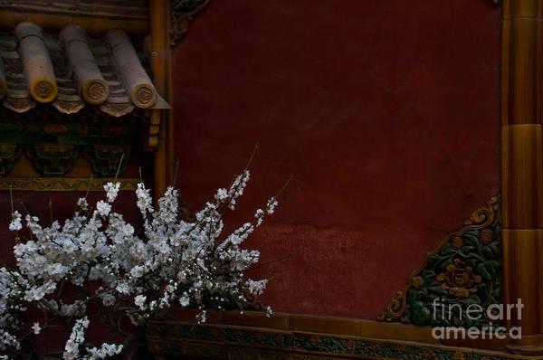 Wall Art - Photograph - Spring In The Forbidden City by Venetta Archer