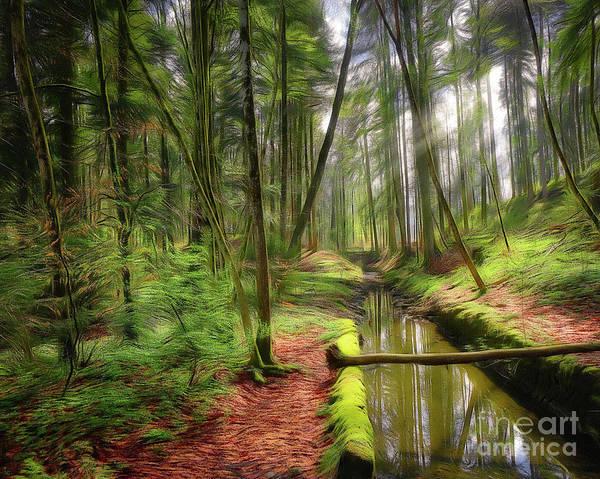 Digital Art - Spring In The Forest by Edmund Nagele