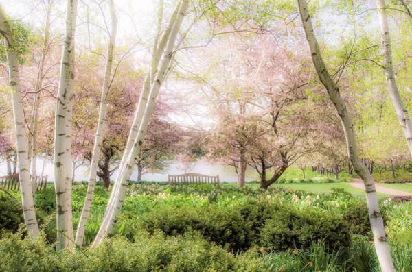 Chicago Botanic Garden Photograph - Spring In The Garden by Julie Palencia