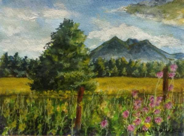 Flagstaff Painting - Spring In The High Country by Cheryl Wallace