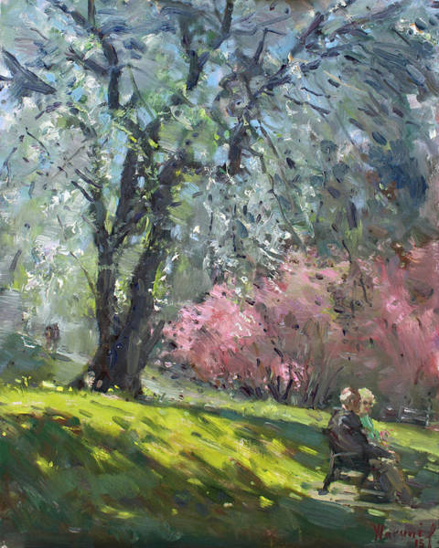 Blooming Wall Art - Painting - Spring In The Park by Ylli Haruni