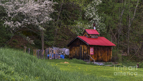 Photograph - Spring In Vermont by Scenic Vermont Photography