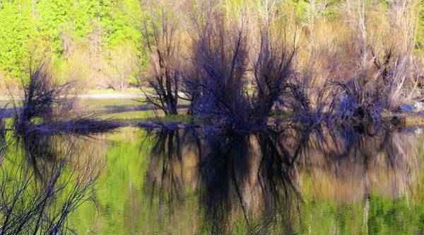 Photograph - Spring In Yosemite Reflection by Polly Castor