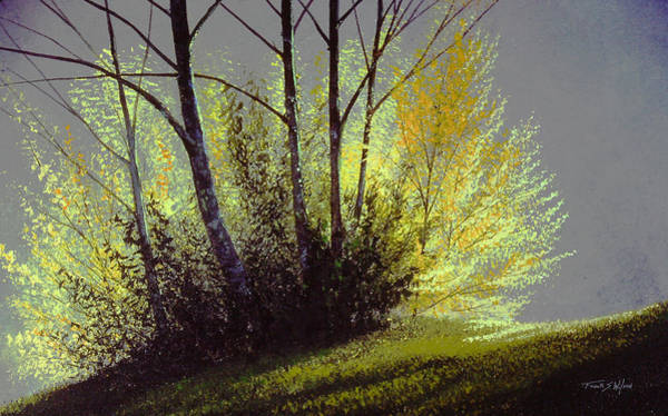 Painting - Spring Light by Frank Wilson