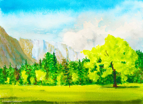 Painting - Spring Meadow Yosemite Valley by Douglas Castleman