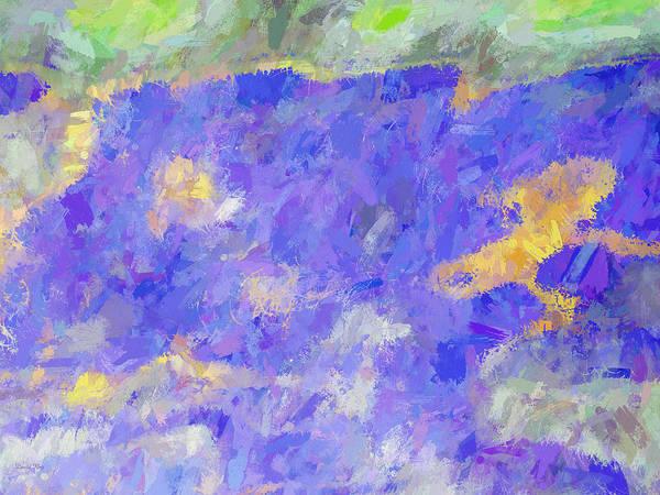Digital Art - Spring Melody by David King