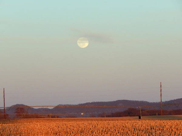 Photograph - Spring Moon Trempealeau by Wild Thing