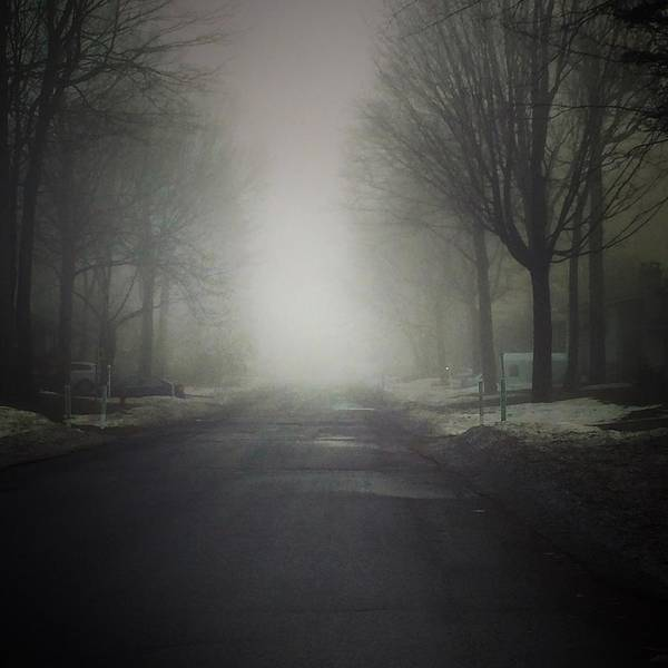 Photograph - Spring Morning Fog by Mario MJ Perron
