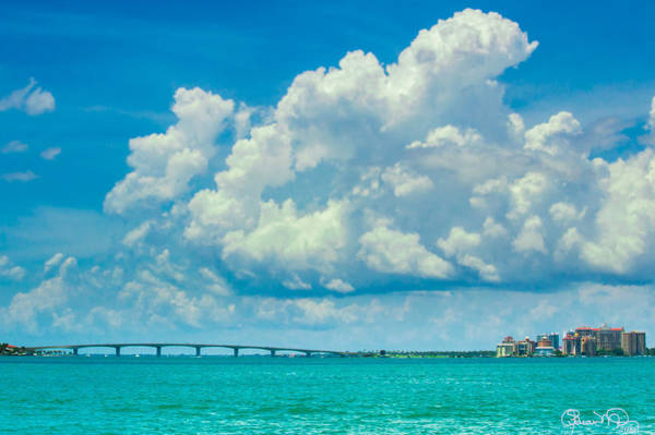 Photograph - Spring On Sarasota Bay by Susan Molnar