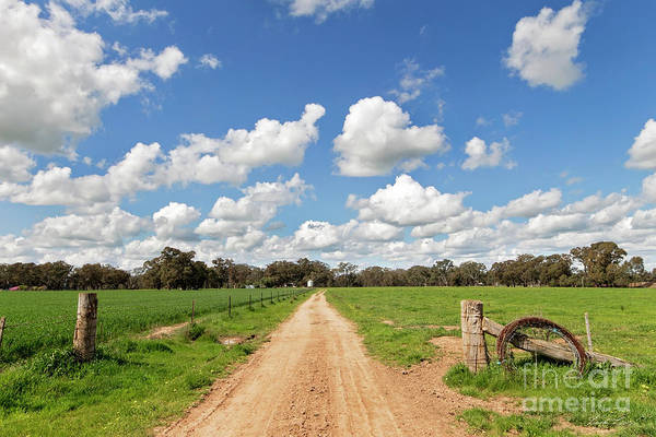 Wall Art - Photograph - Spring On The Farm by Linda Lees