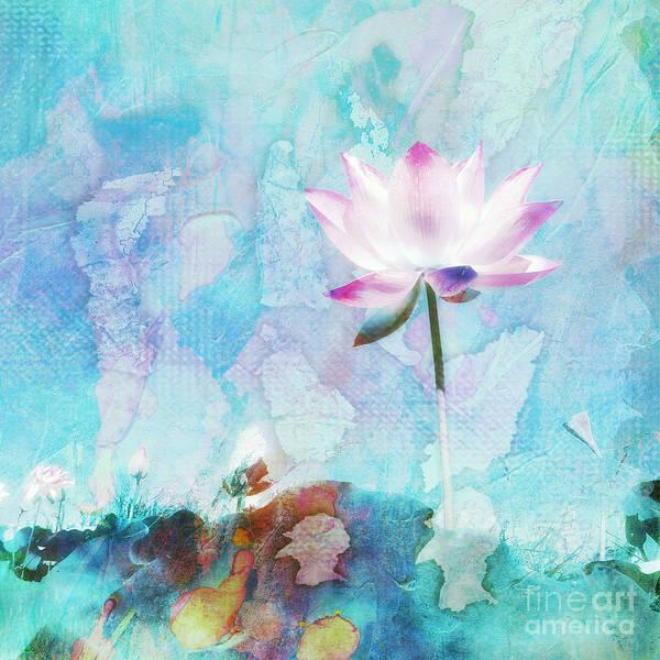 Blue Lotus Flower Paintings Fine Art America