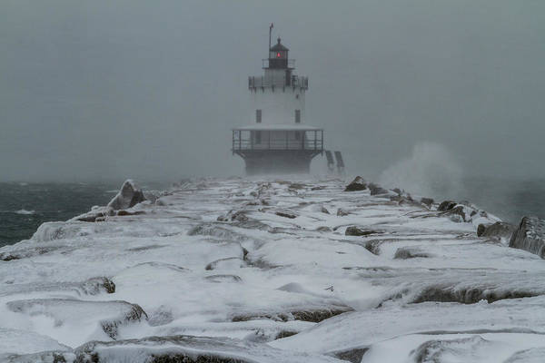 Photograph - Spring Point Ledge Light Blizzard  by Colin Chase