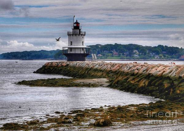 Wall Art - Photograph - Spring Point Ledge Light by Colleen Mars