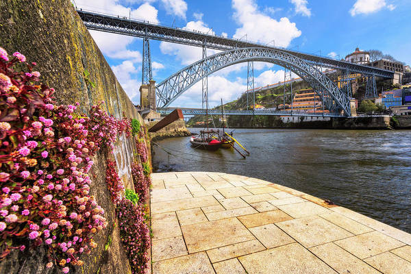 Photograph - Spring - Porto, Portugal by Nico Trinkhaus