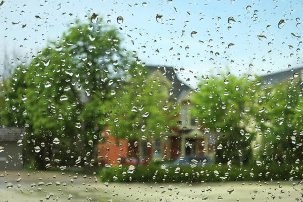 Photograph - Spring Rain by Tatiana Travelways