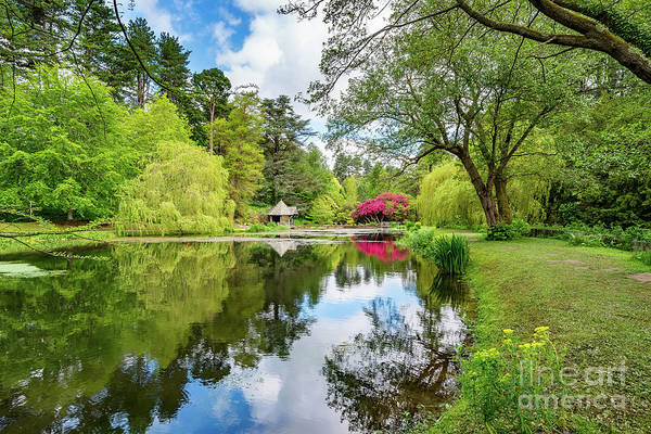 Wall Art - Photograph - Spring Lake Reflections by Adrian Evans