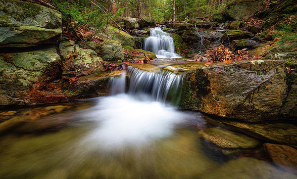 Photograph - Spring Runoff IIi by Robert Clifford
