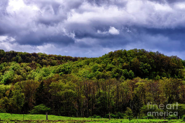 Photograph - Spring Sky Williams River Road by Thomas R Fletcher