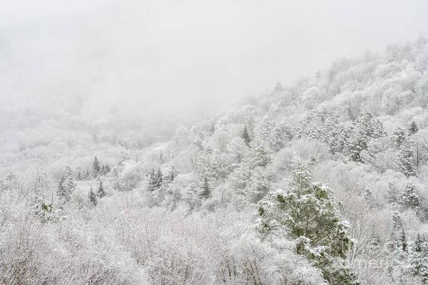 Photograph - Spring Snow And Fog Highlands by Thomas R Fletcher