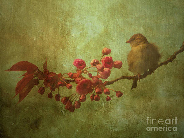 Blooming Tree Mixed Media - Spring Sparrow by KaFra Art