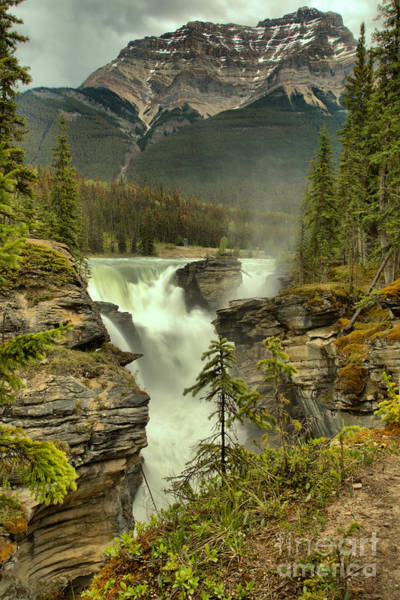 Photograph - Spring Storms Over Athabasca Falls Portrait by Adam Jewell